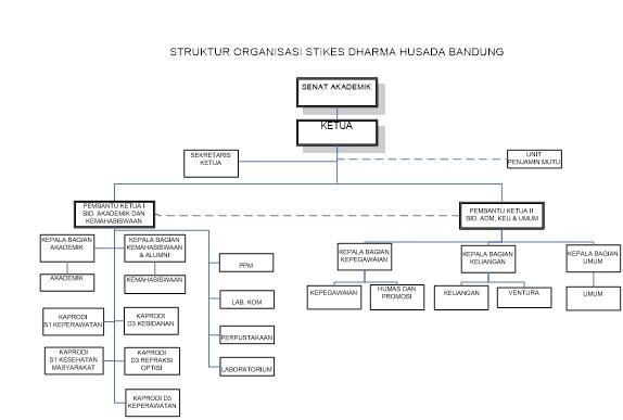STRUKTUR DHB Struktur Organisasi STIKes